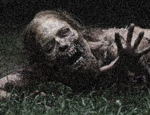 Know Your Enemy: Understanding Zombies