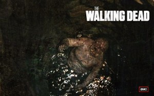 The Walking Dead Zombie Wallpaper Season 2 Well Zombie