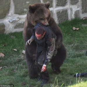 bear eating person - bear attacking man