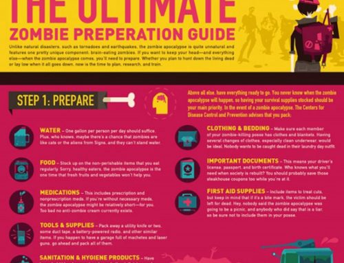 The Ultimate Zombie Preperation Guide Infographic